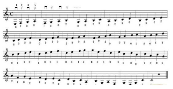 Những nốt nhạc muôn hình, muôn dạng tượng trưng cho những thăng trầm